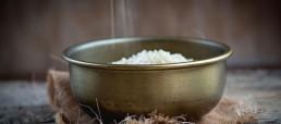 arroz-boletus