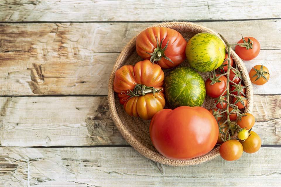 Refranes gastronómicos que te gustará entender